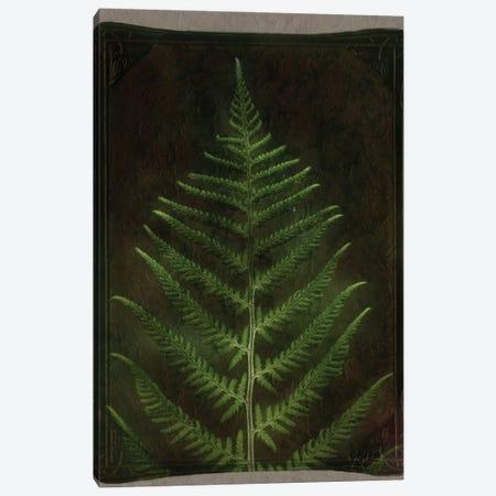 Vintage Ferm Leaf Canvas Print #KAJ131} by Katrina Jones Canvas Wall Art