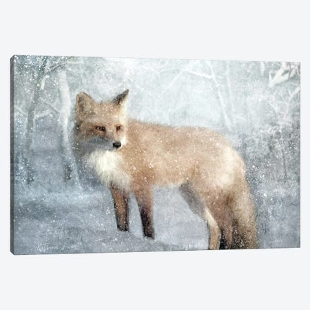 Winter Fox In Falling Snow Canvas Print #KAJ139} by Katrina Jones Canvas Wall Art