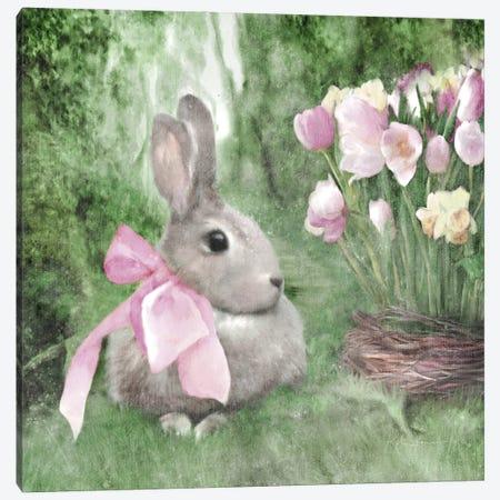 Spring Forest Bunny Canvas Print #KAJ84} by Katrina Jones Canvas Art