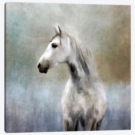 Dapple Grey Canvas Print #KAJ93} by Katrina Jones Canvas Art