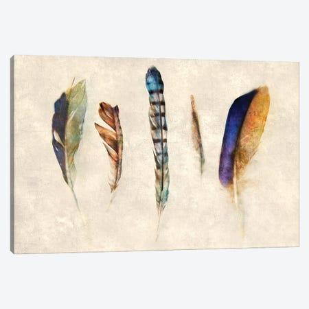 Feathers Canvas Print #KAJ97} by Katrina Jones Canvas Print
