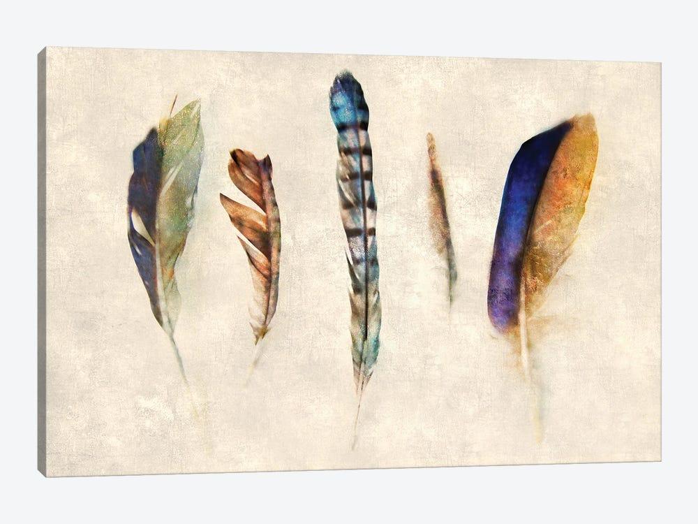 Feathers by Katrina Jones 1-piece Canvas Artwork