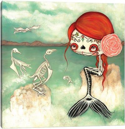 The Dead Sea Canvas Art Print