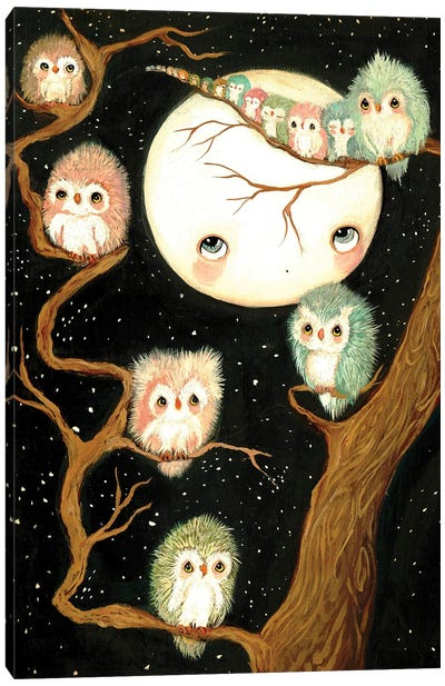 Owls In A Tree Canvas Art Print
