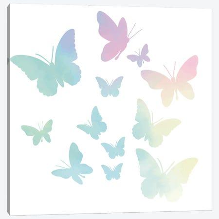 Butterflies Canvas Print #KAL1011} by Kimberly Allen Art Print
