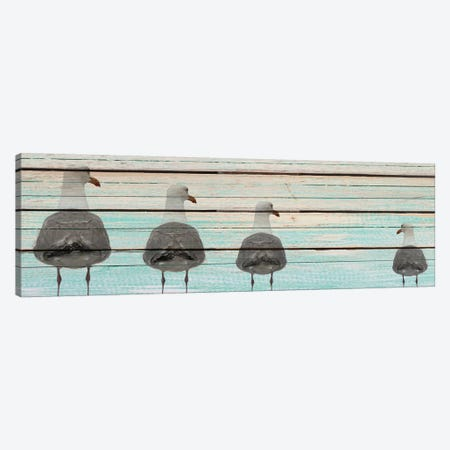 Seagulls Canvas Print #KAL10} by Kimberly Allen Canvas Artwork