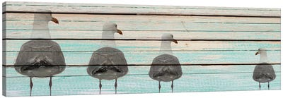 Seagulls Canvas Art Print