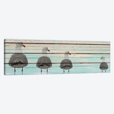 Seagulls Canvas Print #KAL10} by Kimberly Allen Canvas Artwork
