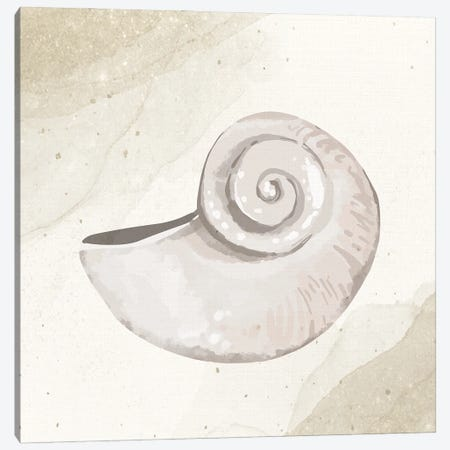 Calming Shell I Canvas Print #KAL1139} by Kimberly Allen Canvas Wall Art