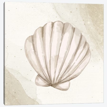 Calming Shell II Canvas Print #KAL1140} by Kimberly Allen Canvas Print