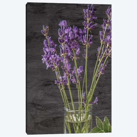 Lavender Jar II 3-Piece Canvas #KAL164} by Kimberly Allen Canvas Wall Art