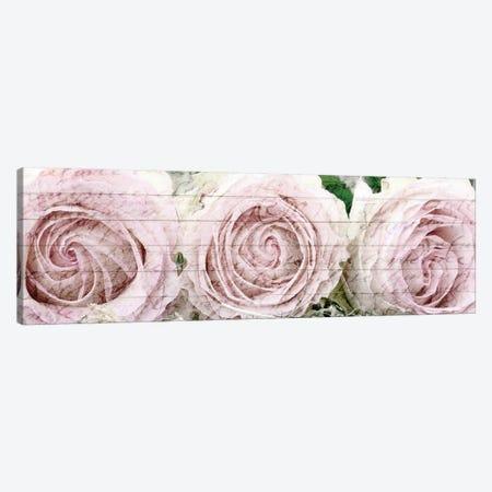 Three Roses Canvas Print #KAL174} by Kimberly Allen Canvas Art Print