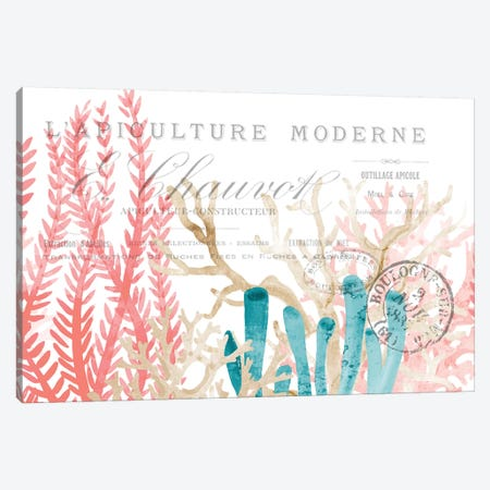 Coral Cove I 3-Piece Canvas #KAL246} by Kimberly Allen Art Print