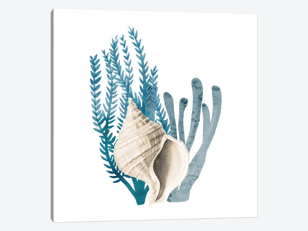 Coral Cove Blue II by Kimberly Allen 1-piece Art Print