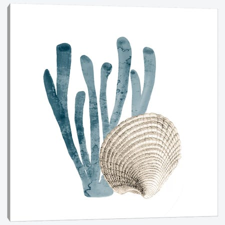 Coral Cove Blue IV Canvas Print #KAL251} by Kimberly Allen Art Print