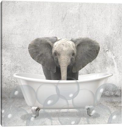 Baby Elephant Bath Canvas Art Print