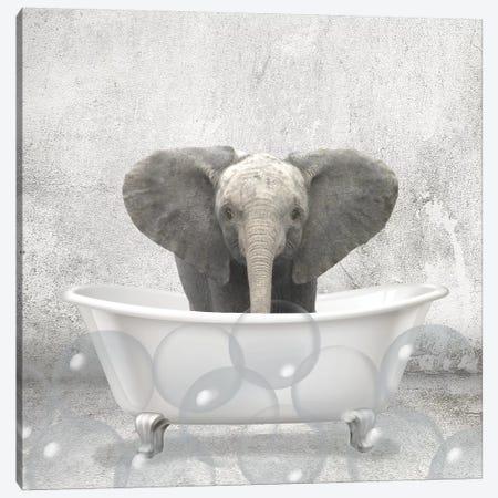 Baby Elephant Bath Canvas Print #KAL294} by Kimberly Allen Canvas Artwork