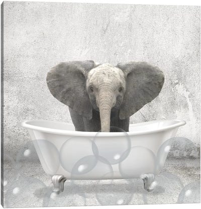 Baby Elephant Bath Canvas Art Print