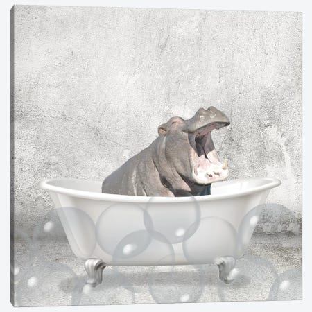 Baby Hippo Bath Canvas Print #KAL296} by Kimberly Allen Canvas Wall Art