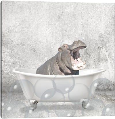 Baby Hippo Bath Canvas Art Print