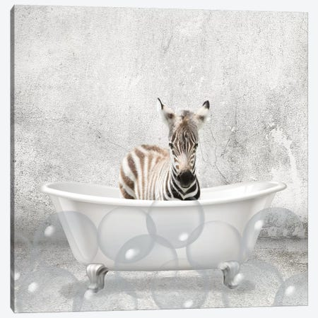 Baby Zebra Bath Canvas Print #KAL299} by Kimberly Allen Canvas Print