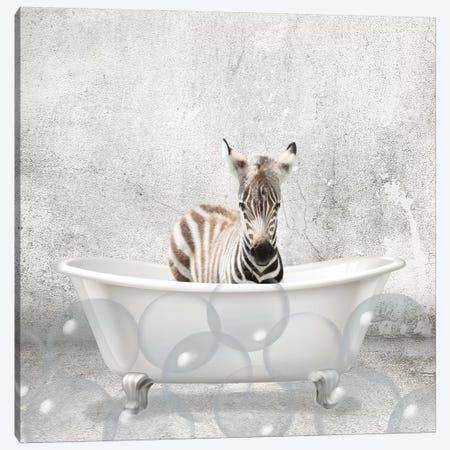 Baby Zebra Bath Canvas Print #KAL299} by Kimberly Allen Canvas Print
