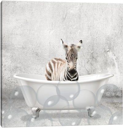 Baby Zebra Bath Canvas Art Print