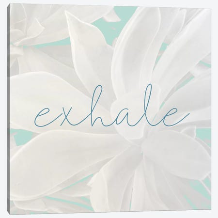 Exhale Canvas Print #KAL300} by Kimberly Allen Canvas Art Print