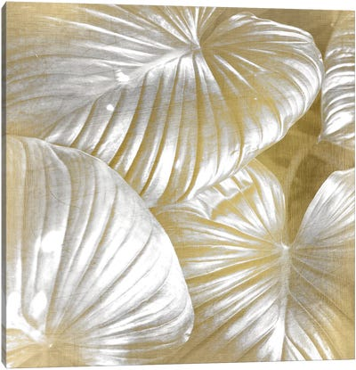 Tropic Gold I Canvas Art Print