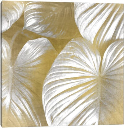 Tropic Gold II Canvas Art Print