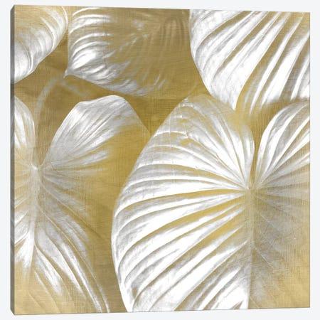 Tropic Gold II Canvas Print #KAL35} by Kimberly Allen Art Print