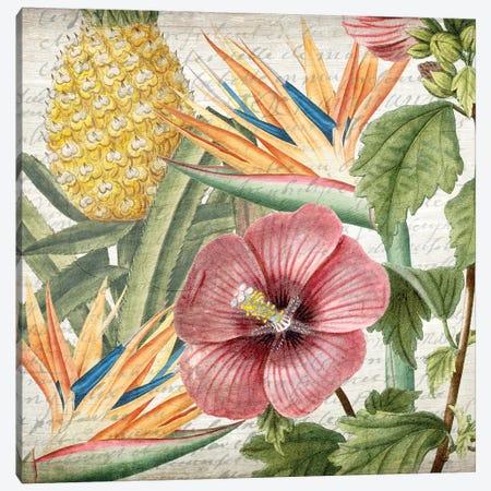 My Tropics I Canvas Print #KAL36} by Kimberly Allen Canvas Art Print