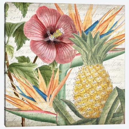 My Tropics II Canvas Print #KAL37} by Kimberly Allen Canvas Art Print