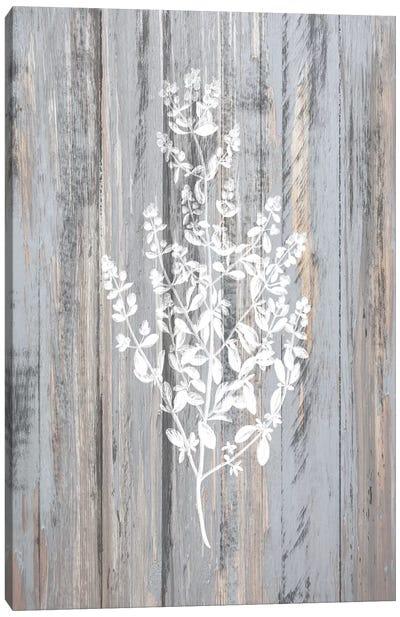 Botanical Wood II Canvas Art Print