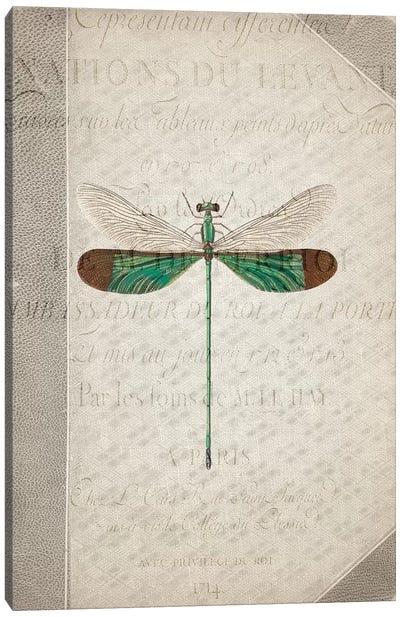 Dragonfly Book II Canvas Art Print
