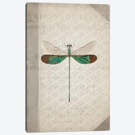 Dragonfly Book II 3-Piece Canvas #KAL401} by Kimberly Allen Canvas Art