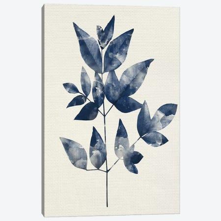 Indigo Leaves II Canvas Print #KAL418} by Kimberly Allen Art Print