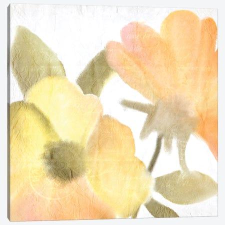 Summer Blooms II Canvas Print #KAL43} by Kimberly Allen Art Print