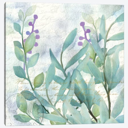 Watercolor Floral II Canvas Print #KAL45} by Kimberly Allen Canvas Art