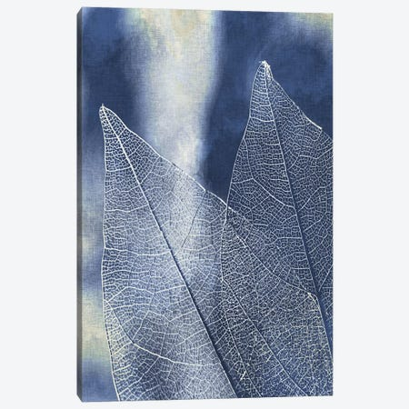 Transparent Leaves II 3-Piece Canvas #KAL466} by Kimberly Allen Canvas Art Print