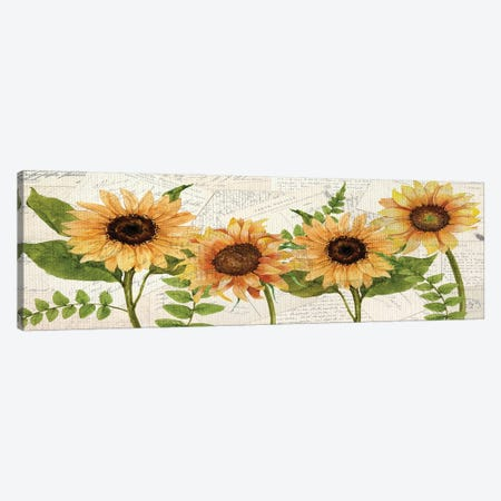 Sunflower Letters Canvas Print #KAL510} by Kimberly Allen Canvas Wall Art