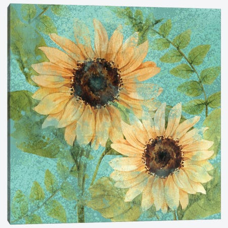 Sunflower Teal Canvas Print #KAL514} by Kimberly Allen Art Print