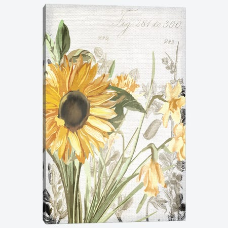 Wildflower Guide I Canvas Print #KAL515} by Kimberly Allen Canvas Print