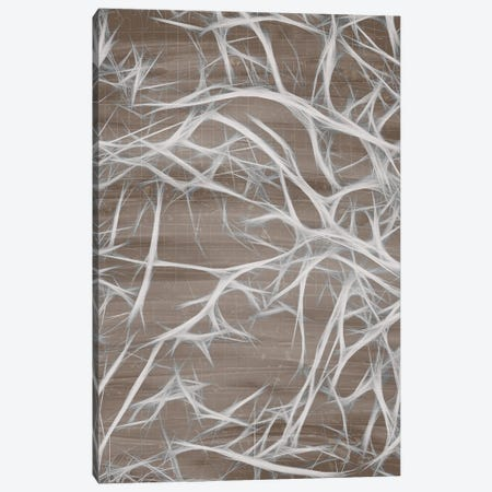 Branching I Canvas Print #KAL520} by Kimberly Allen Canvas Print