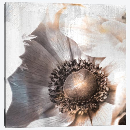 Golden Lights II Canvas Print #KAL573} by Kimberly Allen Canvas Artwork
