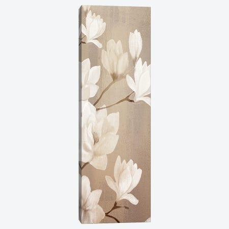 Magnolia Panel I Canvas Print #KAL582} by Kimberly Allen Canvas Print