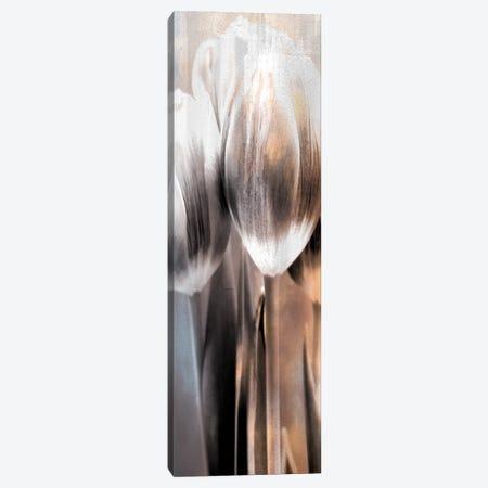 Tulip II 3-Piece Canvas #KAL600} by Kimberly Allen Canvas Artwork