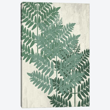 Fern I Greens Canvas Print #KAL688} by Kimberly Allen Canvas Wall Art