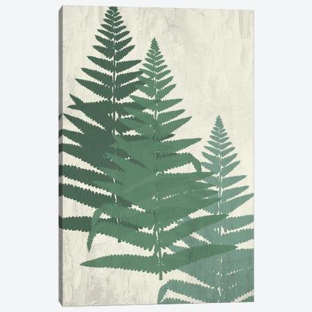 Fern II Greens Canvas Print #KAL689} by Kimberly Allen Canvas Art