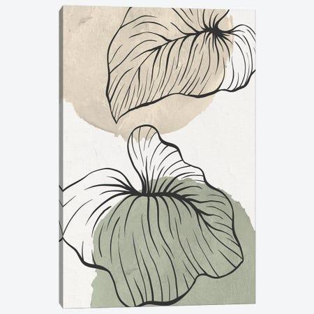 Palm Organics II Canvas Print #KAL702} by Kimberly Allen Art Print